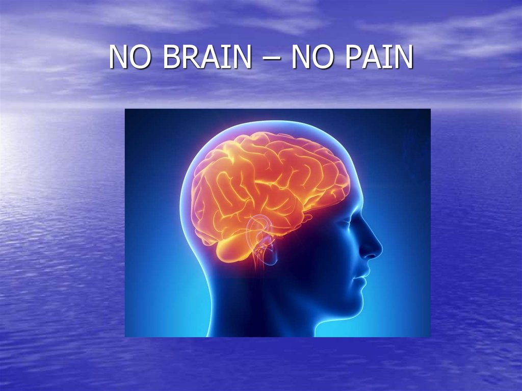 NO BRAIN – NO PAIN