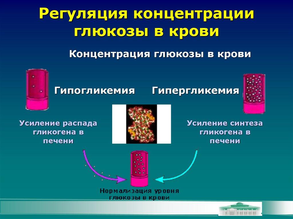 Низкое содержание глюкозы в крови