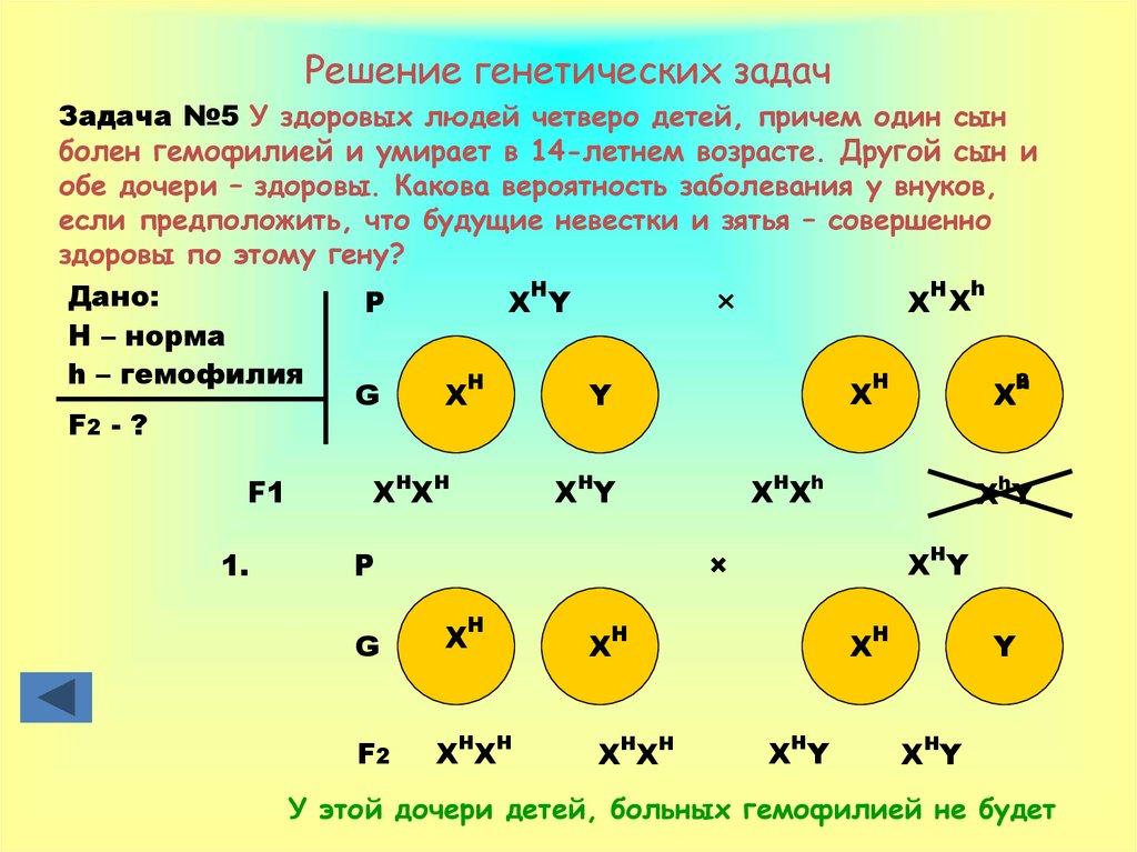 Генетическая задача решить решение задач по физике онлайн бесплатно генденштейн