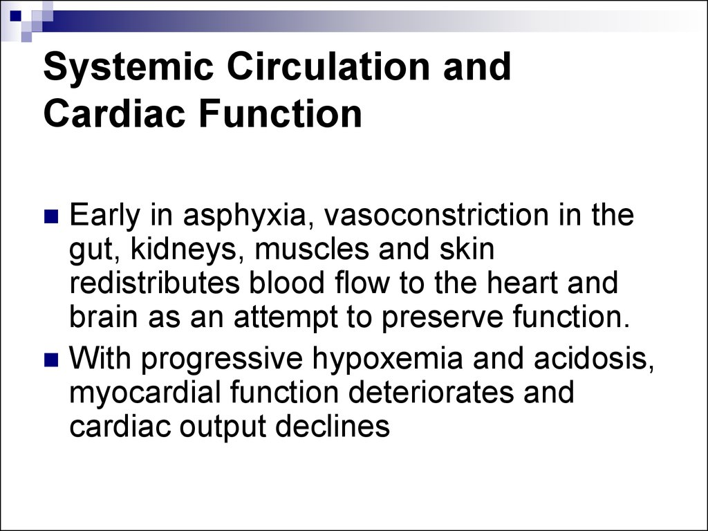 Systemic Circulation and Cardiac Function