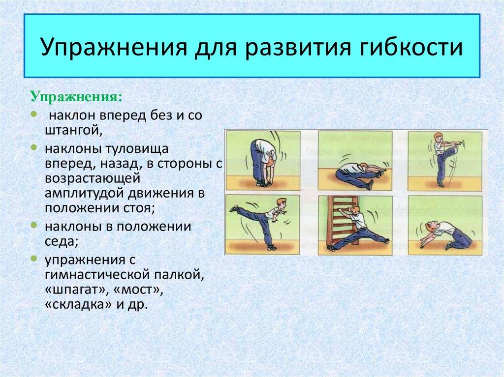 Упражнения используемые для развития гибкости