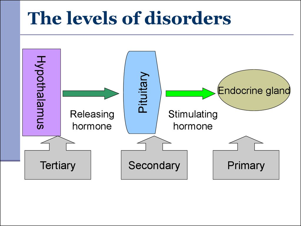 The levels of disorders