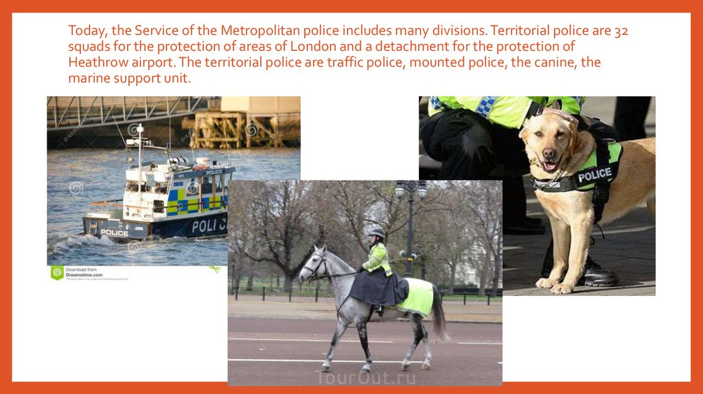 Today, the Service of the Metropolitan police includes many divisions. Territorial police are 32 squads for the protection of areas of London and a detachment for the protection of Heathrow airport. The territorial police are traffic police, mounted polic