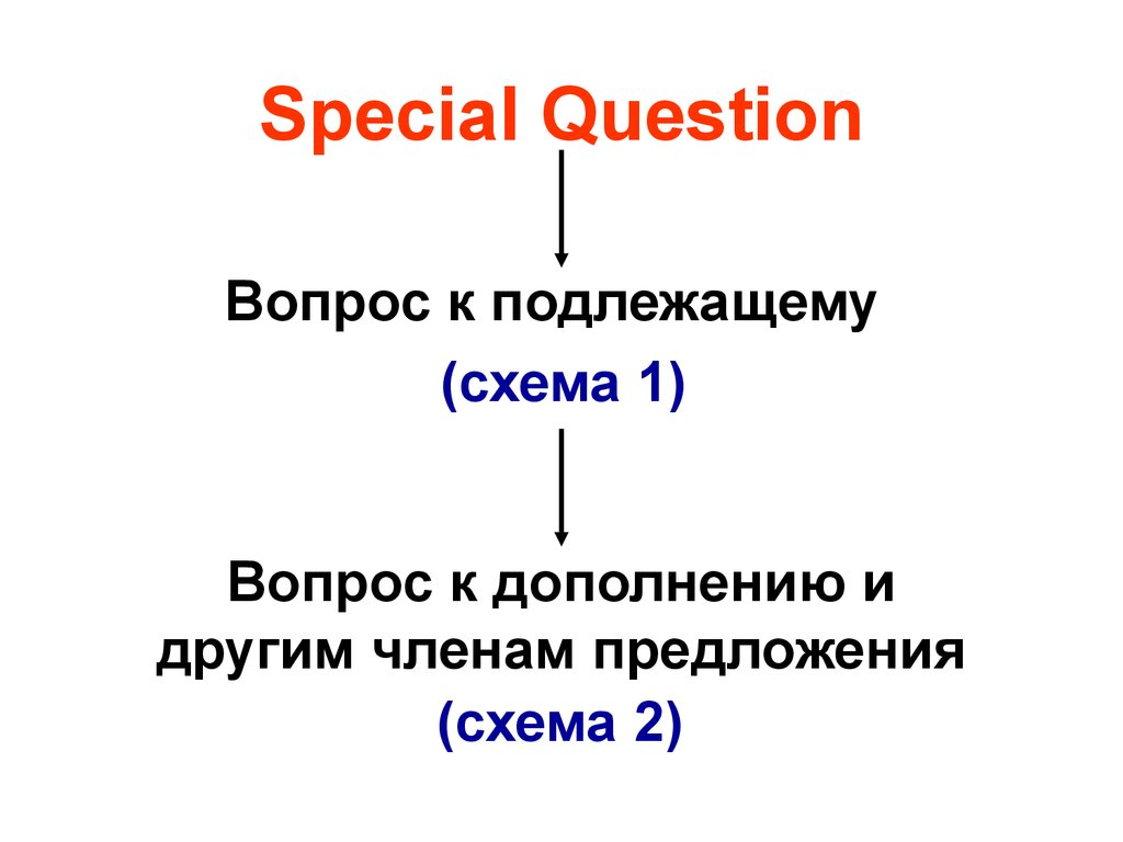 Special Question