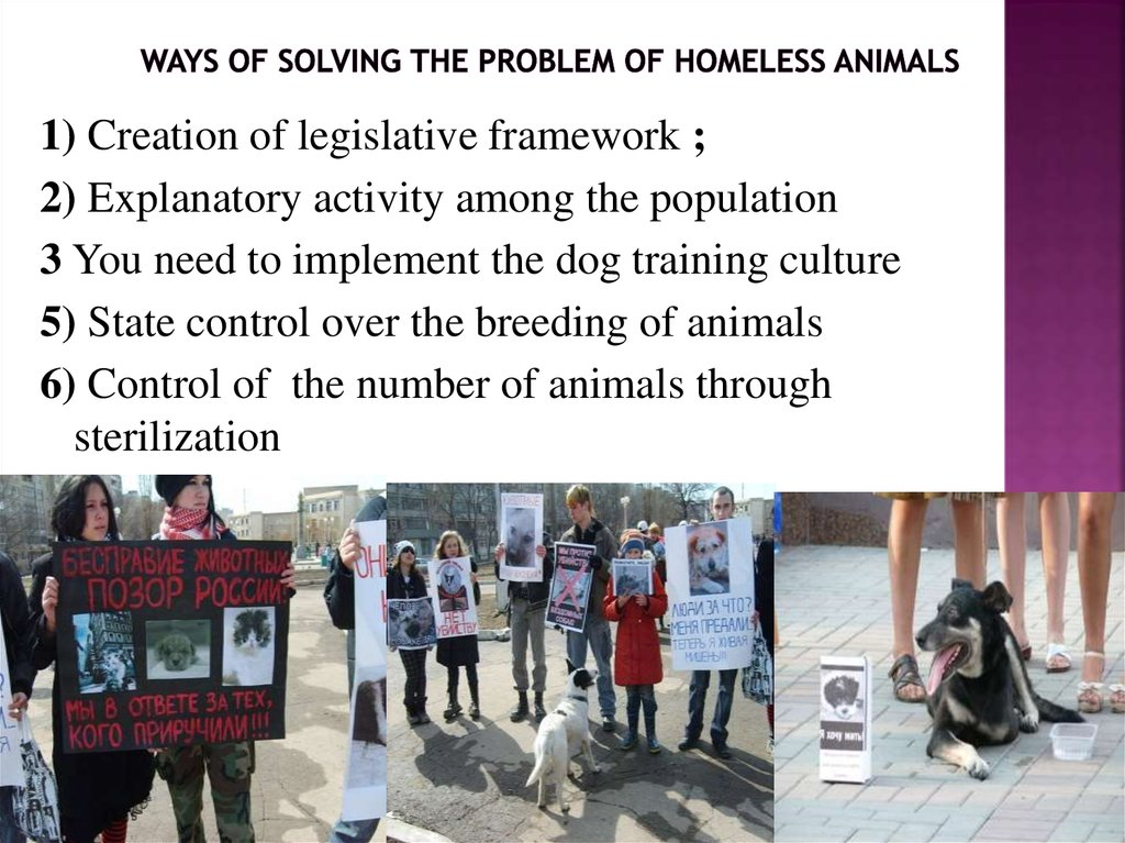 the status issues of our society the problem of homelessness in berkeley The economics of homelessness urban economics  society, individuals, governments de ne \low  if homelessness is merely symptom of actual problem, extreme.