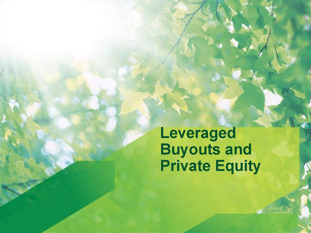 leverage buyout lbo of private equity