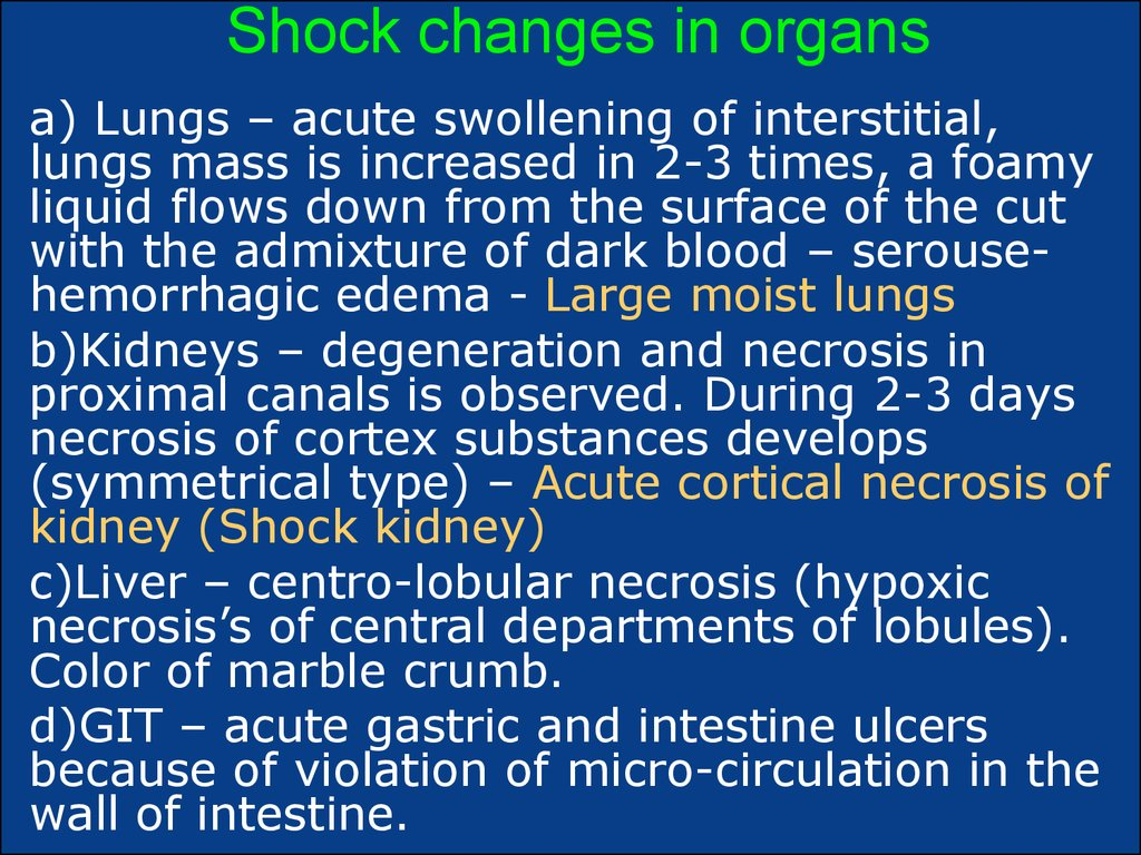 Shock changes in organs