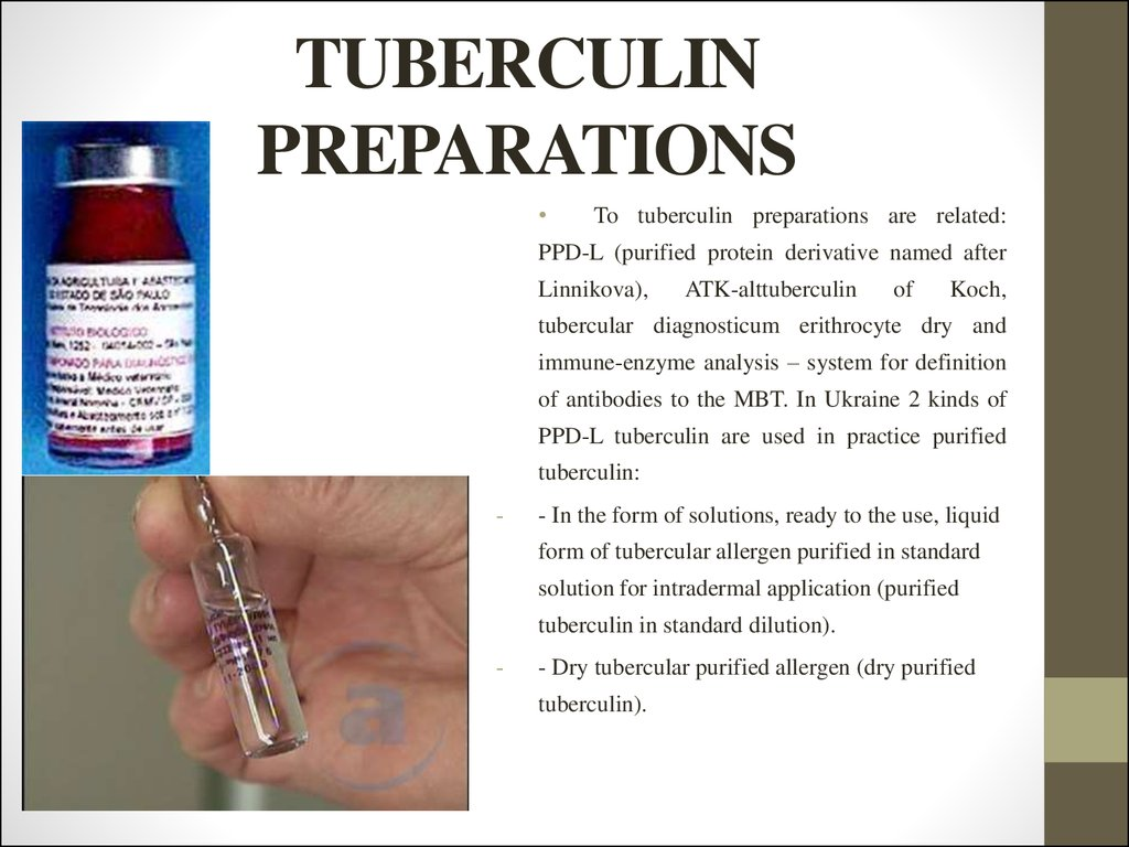 TUBERCULIN PREPARATIONS