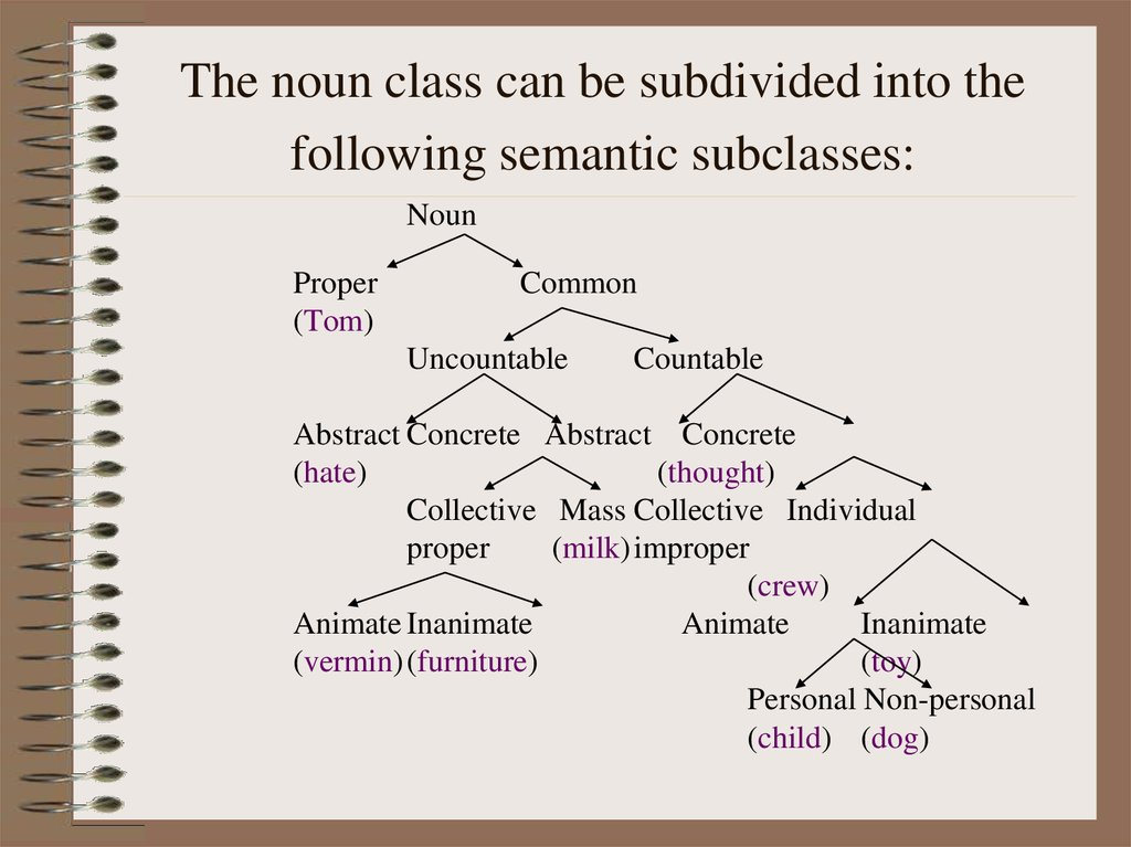 The noun class can be subdivided into the following semantic subclasses: