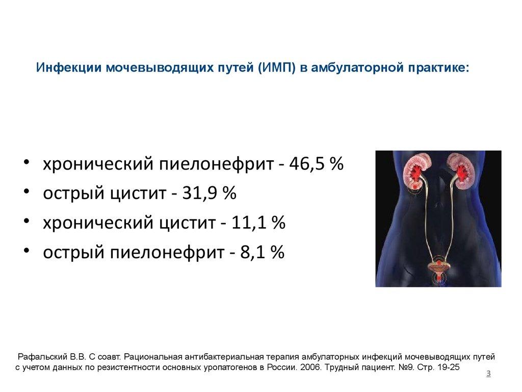 Инфекции мочевыводящих путей в практике врача терапевта  острый пиелонефрит 8 1 % Рафальский В В С соавт Рациональная антибактериальная терапия амбулаторных инфекций мочевыводящих путей