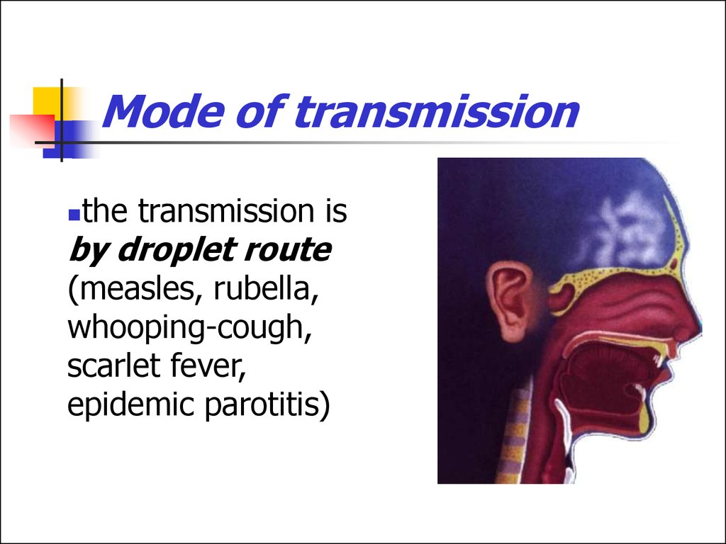 Mode of transmission of viral diseases-3337