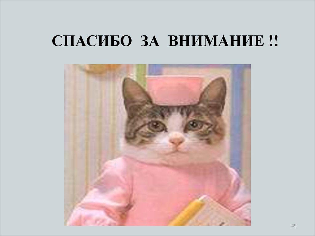 Смешные картинки с надписями спасибо за внимание