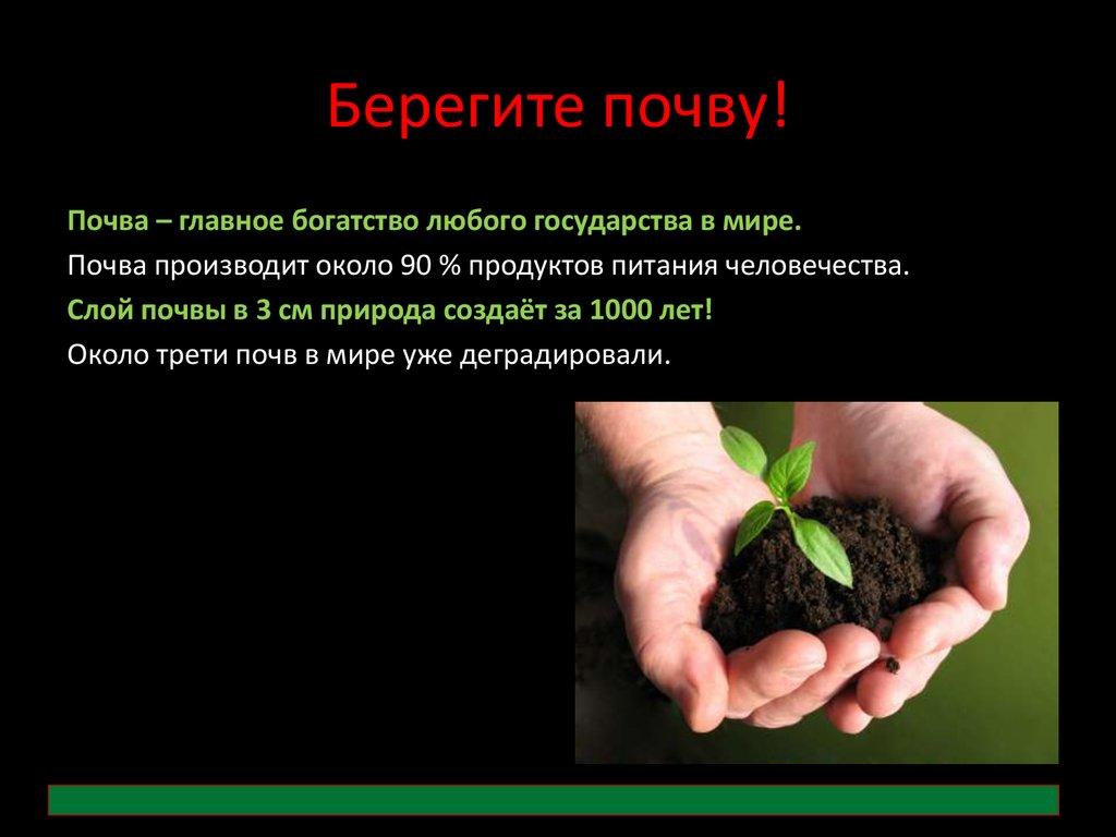 Охрана почвы картинки для детей