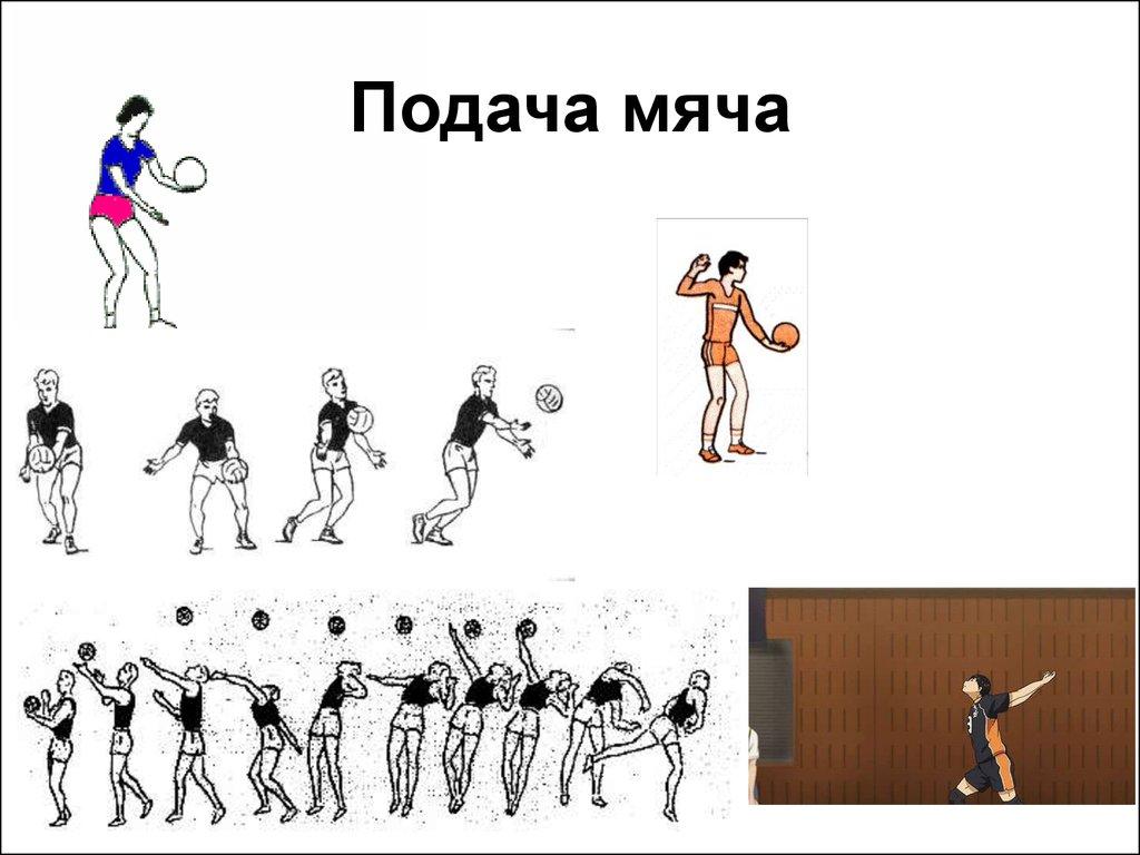 гороскоп следующую как подавать в волейболе аренду Московская
