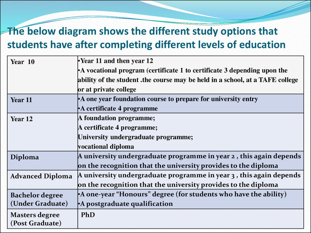 The below diagram shows the different study options that students have after completing different levels of education