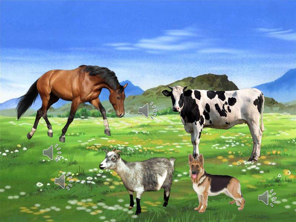 домашние животные картинки со звуками животных овощей