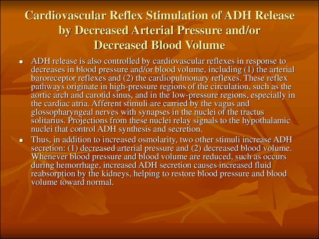 Cardiovascular Reflex Stimulation of ADH Release by Decreased Arterial Pressure and/or Decreased Blood Volume