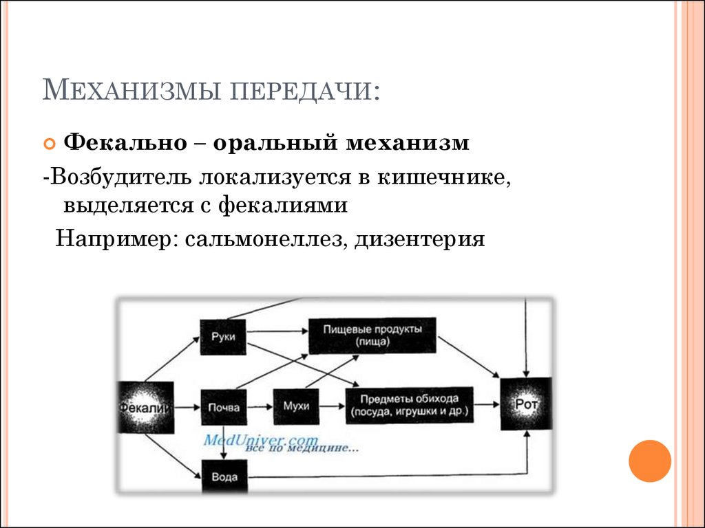 документ картинки механизм передачи которых майке