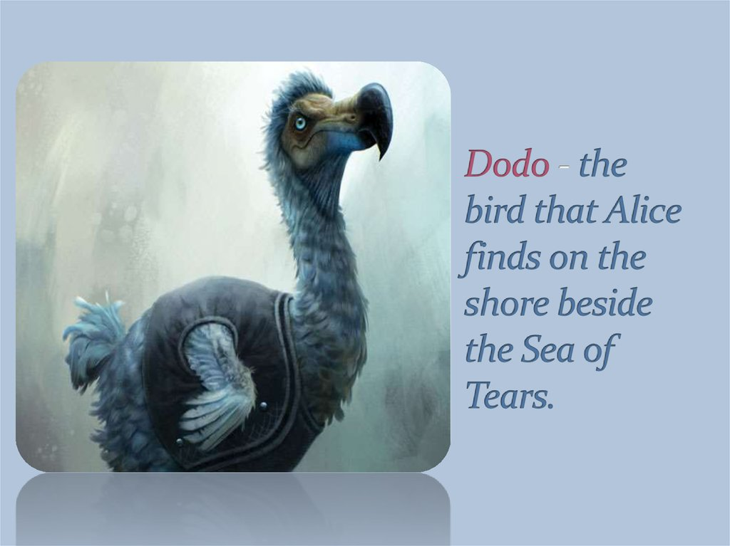 Dodo - the bird that Alice finds on the shore beside the Sea of Tears.