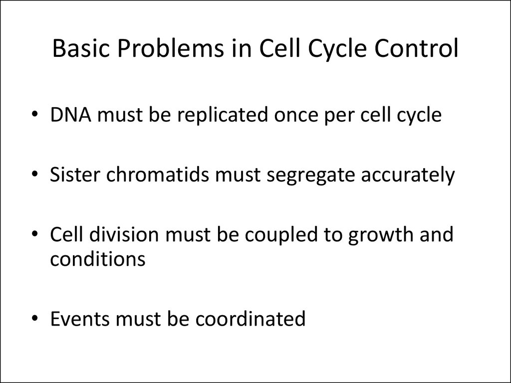 Basic Problems in Cell Cycle Control