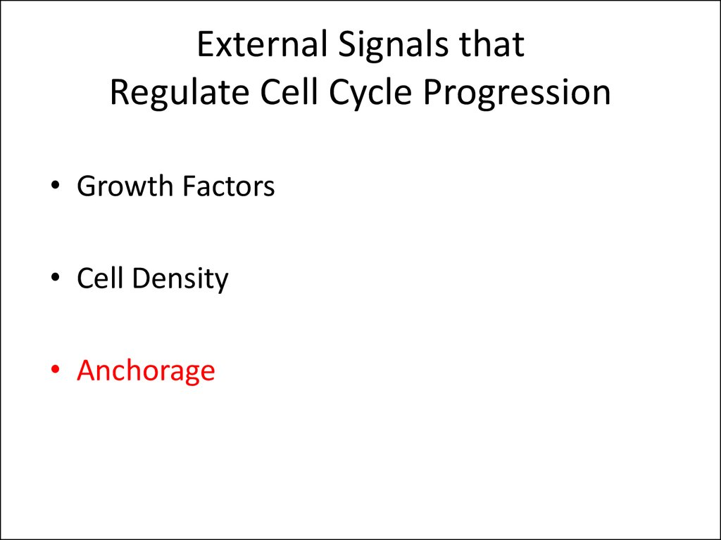 External Signals that Regulate Cell Cycle Progression