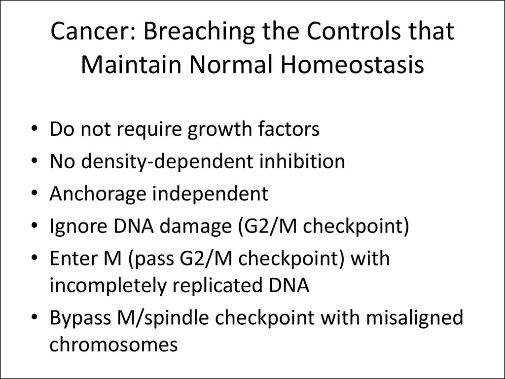 Cancer: Breaching the Controls that Maintain Normal Homeostasis