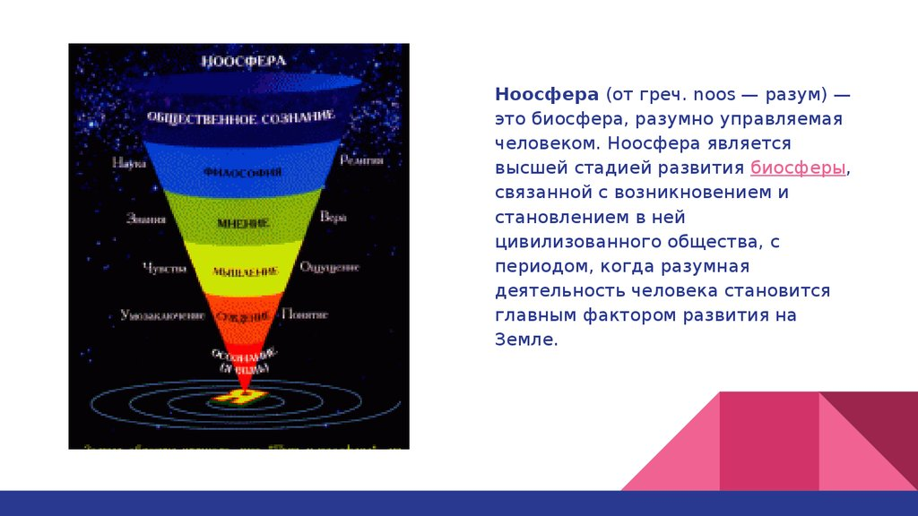 Реферат на тему ноосфера и биосфера 143
