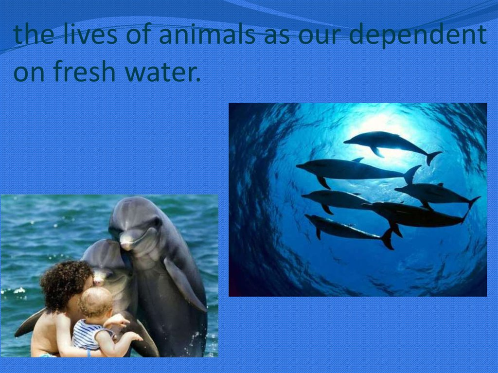 the lives of animals as our dependent on fresh water.