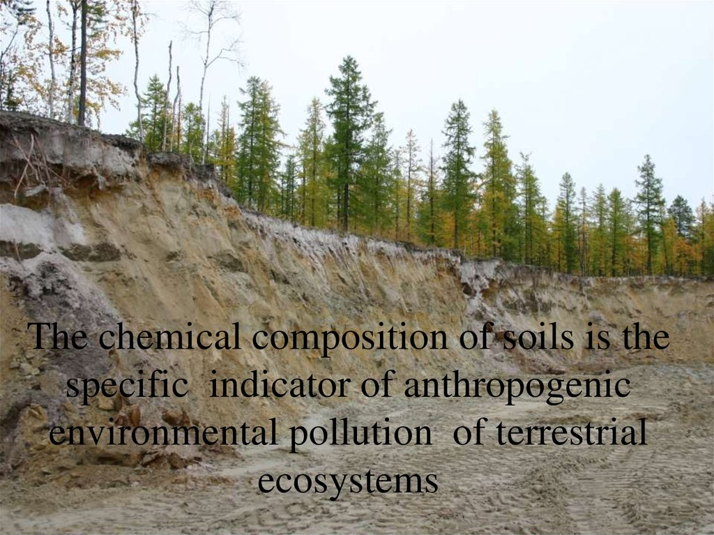 The chemical composition of soils is the specific indicator of anthropogenic environmental pollution of terrestrial ecosystems