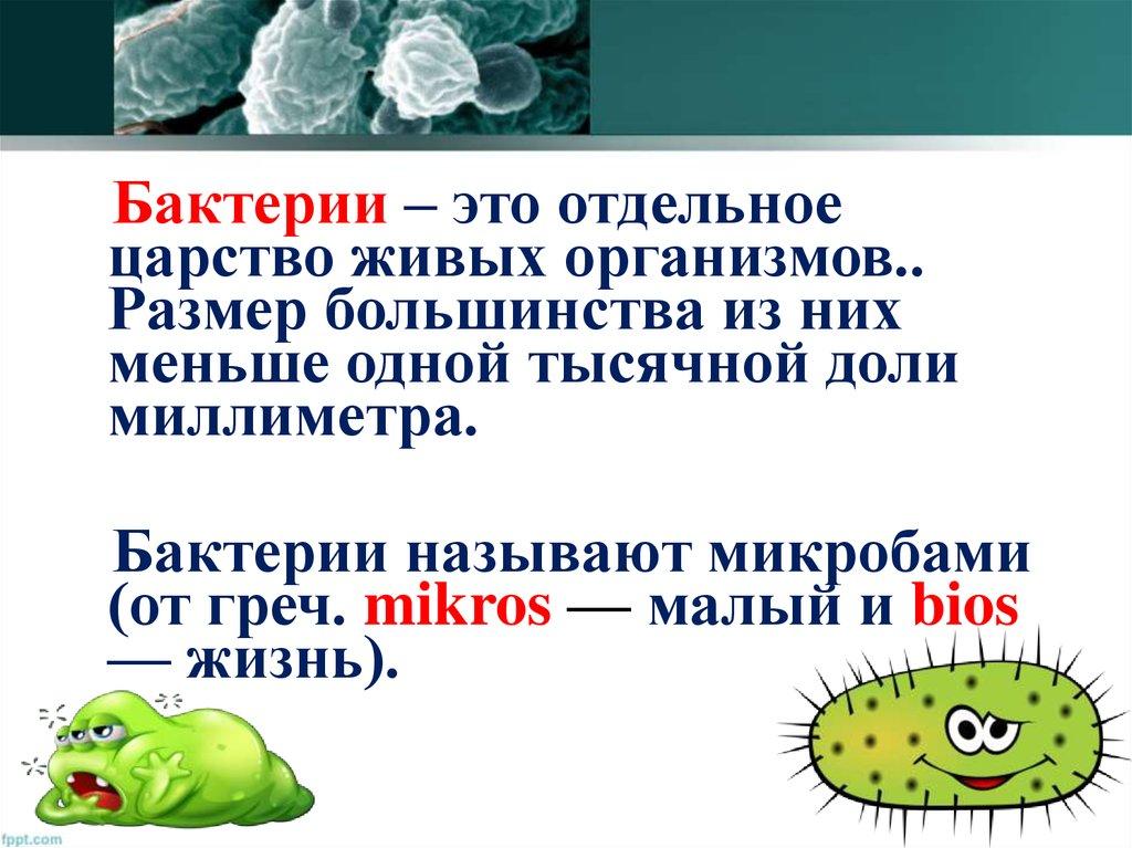 Царство бактерии - online presentation