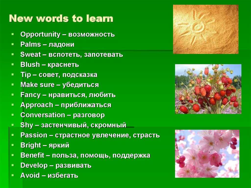 New words to learn