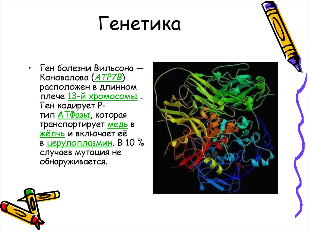 genetics 223 review The genetics of drug hypersensitivity reactions cornejo-garcía ja1,2, jurado-escobar r1, doña i2, perkins jr1,  4genetics unit, department of cell biology, genetics and physiology,  223 2016 aller 2016 v 264 222232.