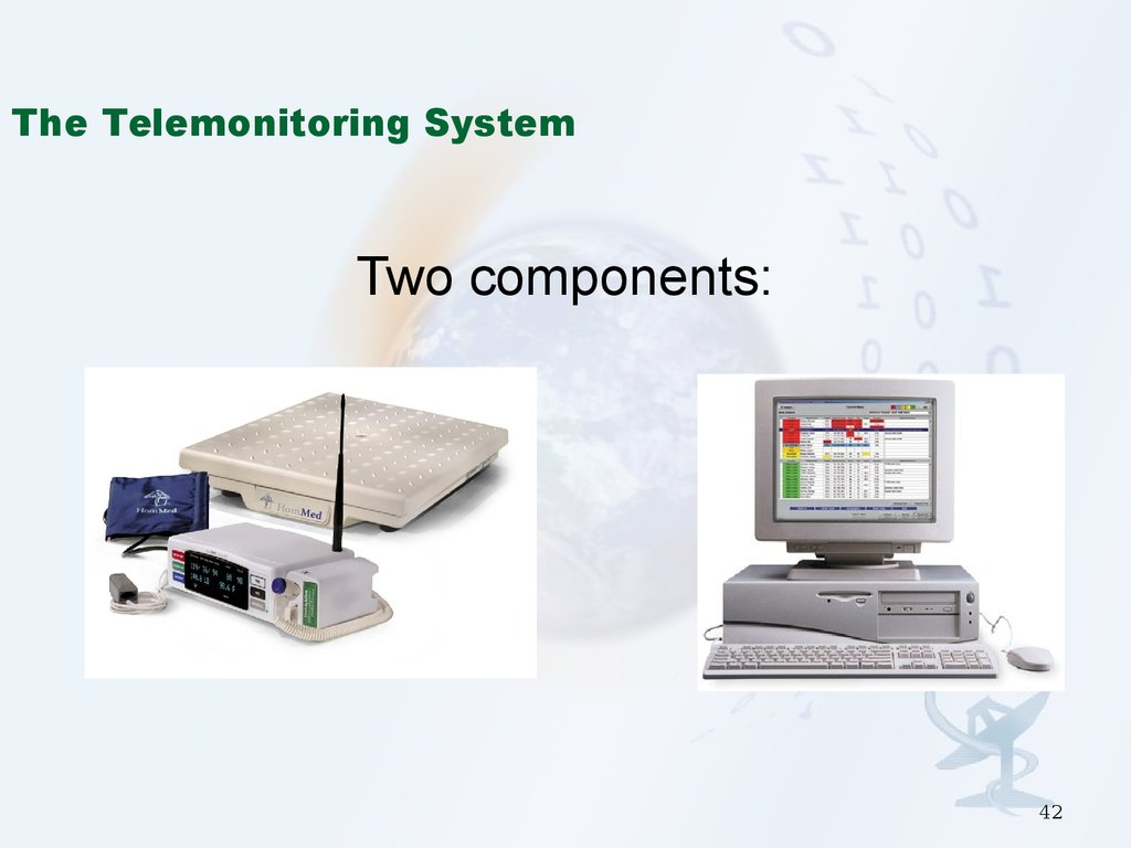The Telemonitoring System