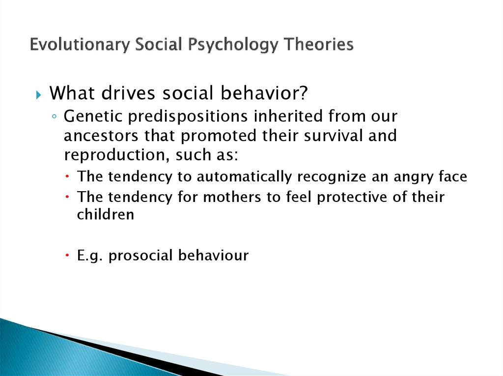 Evolutionary Social Psychology Theories