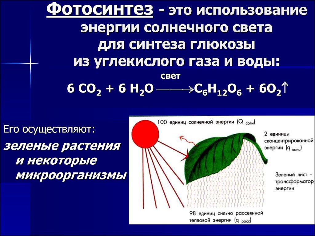 Процесс фотосинтеза углерод однородной консистенции