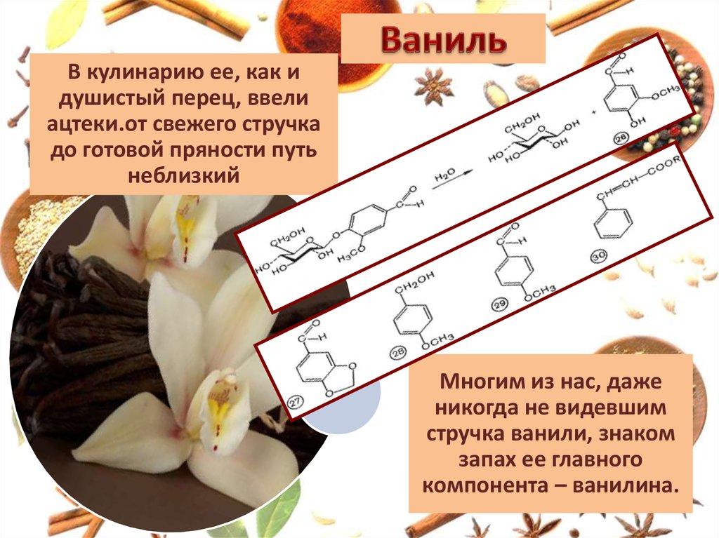Пряности глазами химика реферат 2413