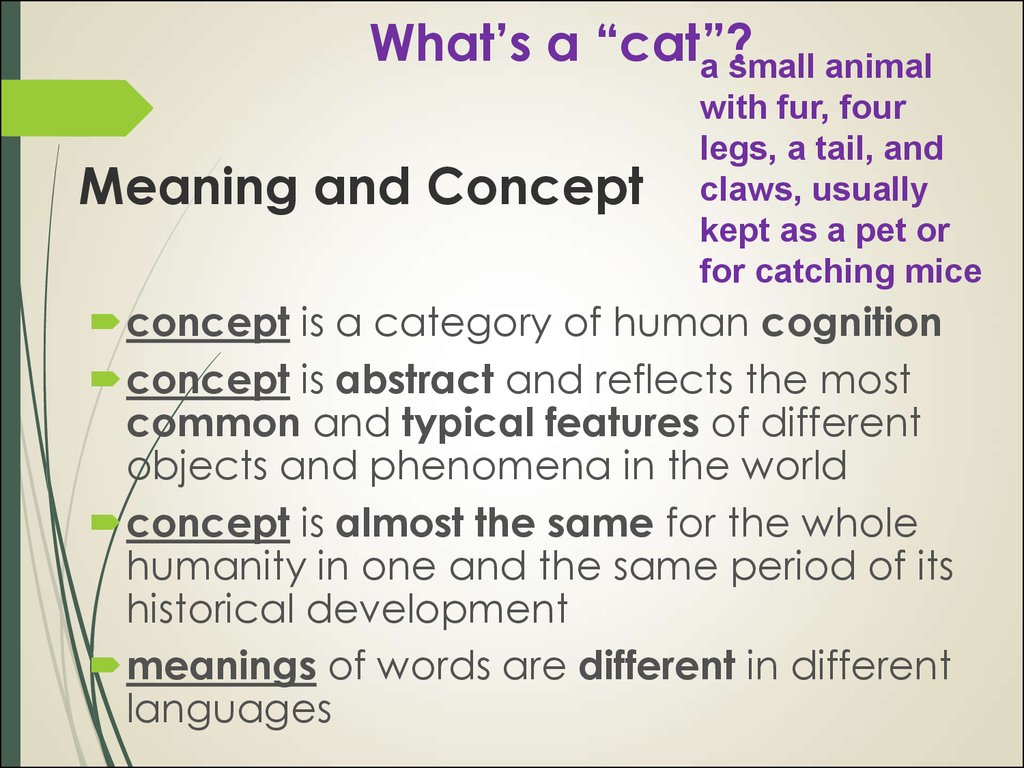"What's a ""cat""?"