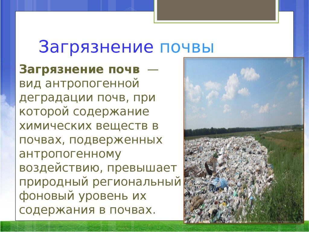 отметить, что загрязнение почвы химическими веществами является надежным партнером