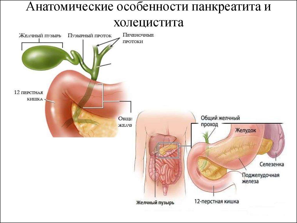 Панкреатит И Холецистит Симптомы И Лечение Диета.
