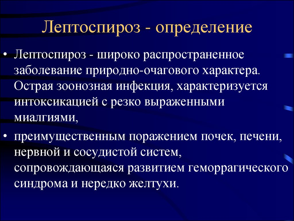 leptospirosis outline