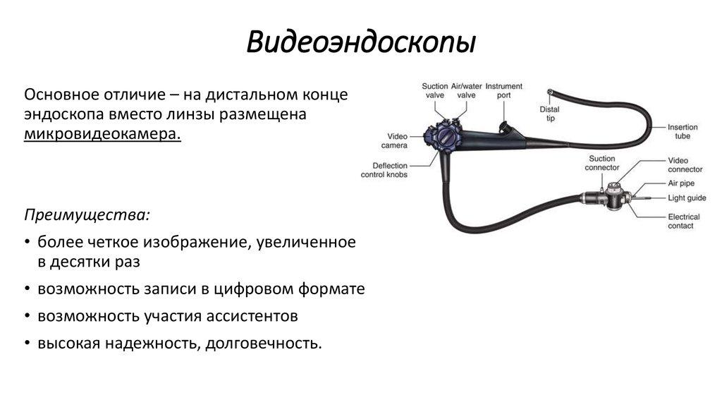 одна наиболее строение эндоскопа картинки два