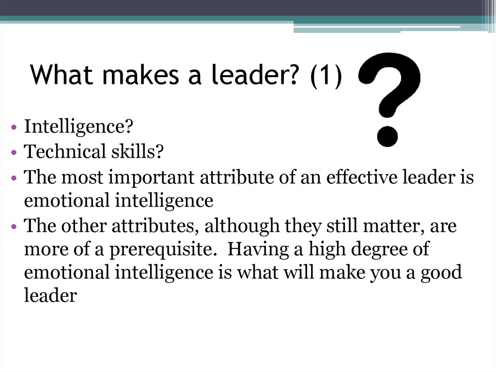 What makes a leader? (1)