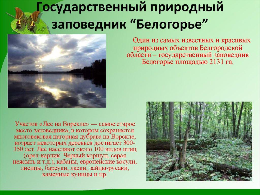 Картинки для, поздравительные открытки заповеднику белогорье