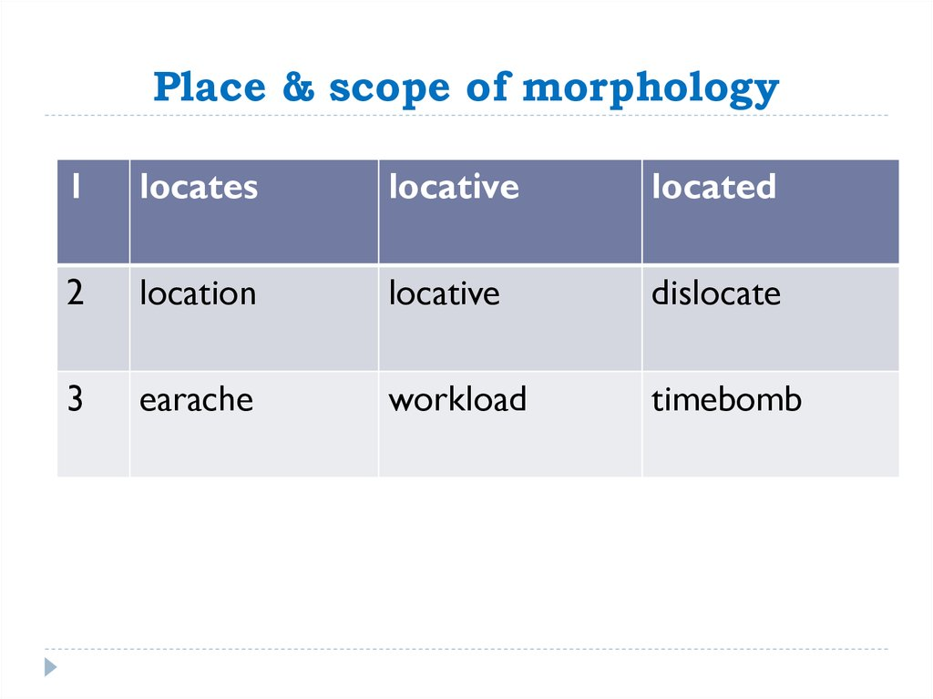 Place & scope of morphology