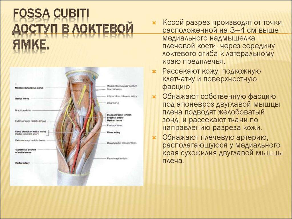 Фото анкилоз локтевого сустава теле