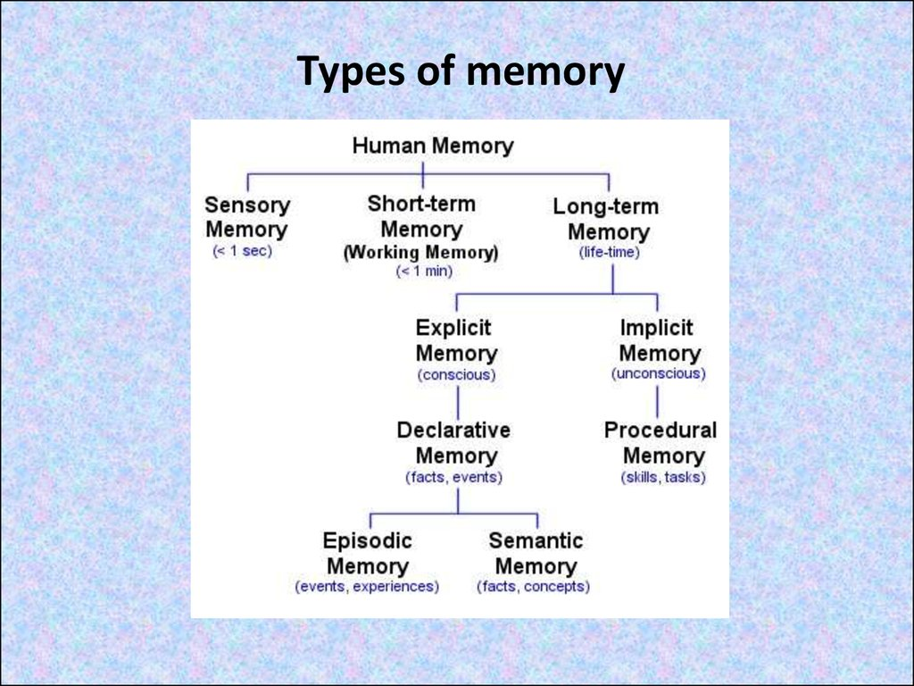 an analysis of the categorize different types of memory In other words, it's a memory technique to help your  of categories, then all you  have to remember is the categories (fewer items), which will serve as memory.
