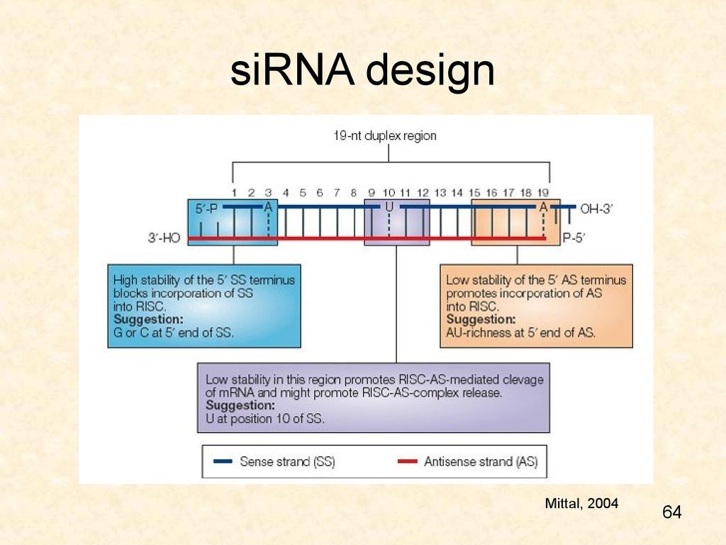 Design Sirna Online