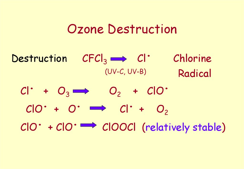 Ozone Destruction