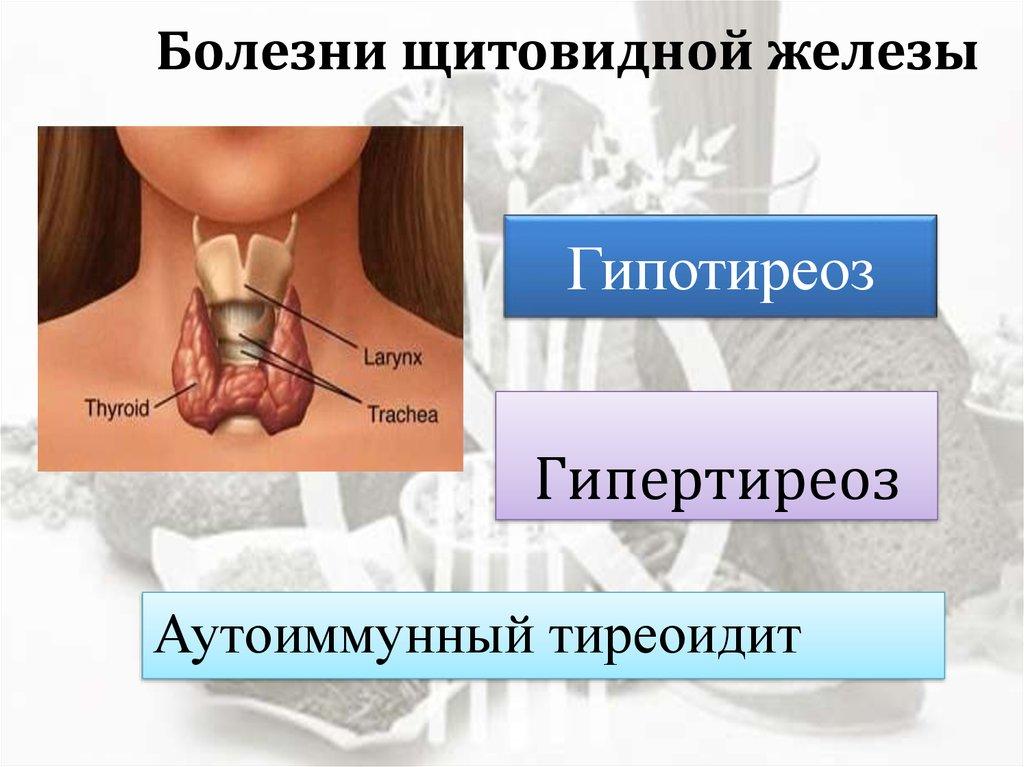 Резкое Похудение При Щитовидке. Лишний вес и гипотиреоз у женщин. Как вернуть здоровье щитовидной железы и похудеть?