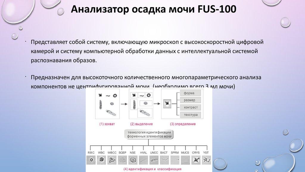 Blo общий анализ мочи значение иммунологический анализатор крови